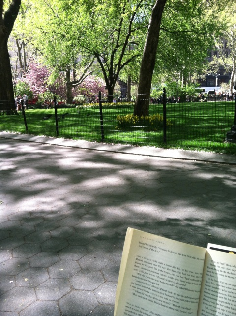 Afternoon in Madison Square Park